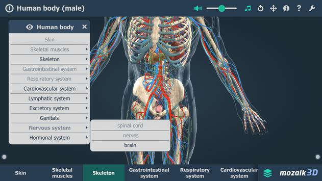 Human Body Male Educational Vr 3d Apk Download Free Education