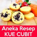 Aneka Resep Kue Cubit