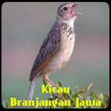 Kicau Branjangan Jawa poster