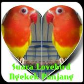 Suara Lovebird Ngekek Panjang icon