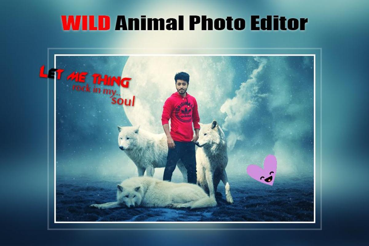 Wild Animal Photo Editor Frame Sticker Effect For Android Apk