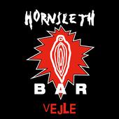 Hornsleth Bar Vejle icon