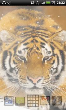 siberian tiger wallpaper screenshot 3
