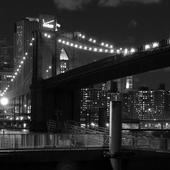 جسر بروكلين Lwp أيقونة