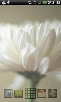 flower petals live wallpaper screenshot 3