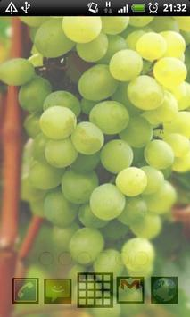 grapes wallpaper apk screenshot