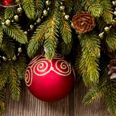 winter decoration icon