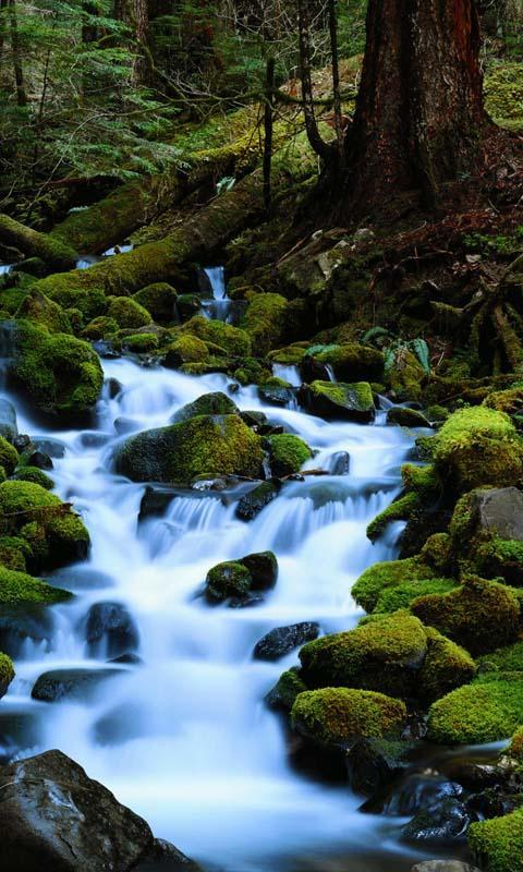 Moving Water Live Wallpaper For Android Apk Download