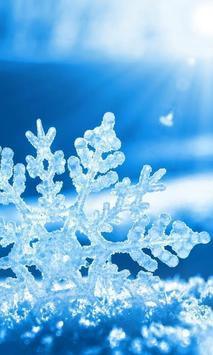 falling snowflake wallpaper poster