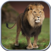 Download Game android Wild Lion Simulator 2016 APK free