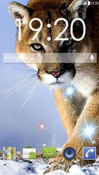 Awesome Puma  Live Wallpaper poster