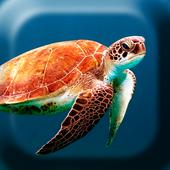 Underwater Turtles Live WP アイコン