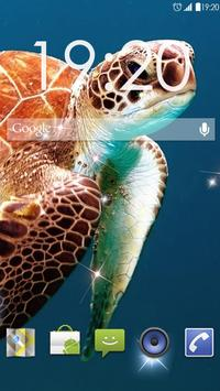 Underwater Turtles Live WP ポスター