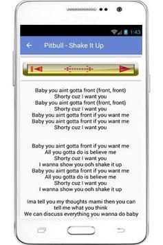 Pitbull Lyrics And Song apk screenshot