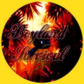 Boyland Survival icon