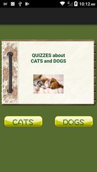 Quiz Cats And Dogs poster