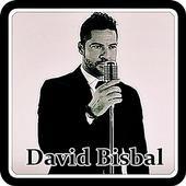David Bisbal -Me Enamoré De Ti icon