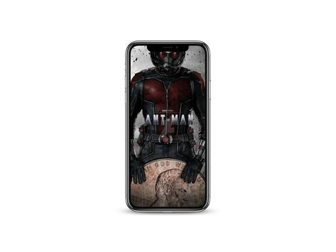 Antman Wallpaper poster