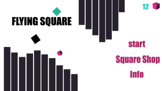 flying square poster