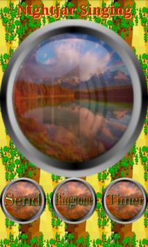 Nature Forest & Jungle Sounds screenshot 10