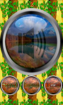 Nature Forest & Jungle Sounds screenshot 13