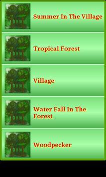 Nature Forest & Jungle Sounds screenshot 1