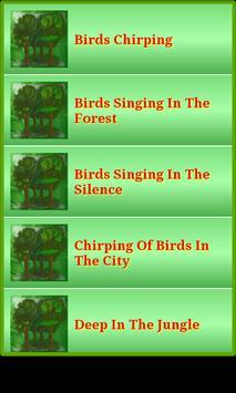 Nature Forest & Jungle Sounds screenshot 7