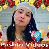 Pashto Videos icon