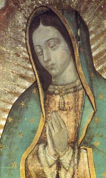 Virgen de Guadalupe Mañanitas screenshot 2
