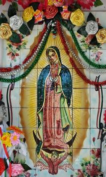 Virgen de Guadalupe Mexicana screenshot 1