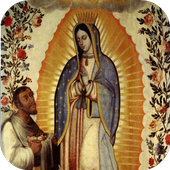 Virgen de Guadalupe Mexico icon