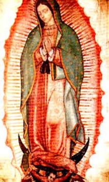 Virgen de Guadalupe Mia screenshot 3