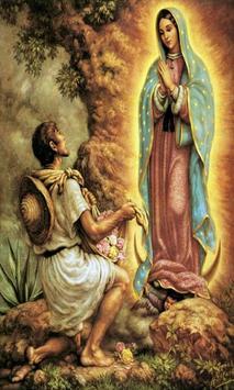 Virgen de Guadalupe Milagros poster
