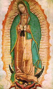 Virgen de Guadalupe Mi Salvadora screenshot 4
