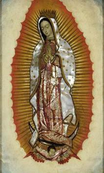 Virgen de Guadalupe Mi Salvadora screenshot 2
