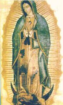 Virgen de Guadalupe Aparicion poster