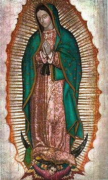 Virgen de Guadalupe Devocion screenshot 4