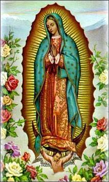 Virgen de Guadalupe en el Cielo poster