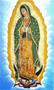 Virgen de Guadalupe en el Cielo apk screenshot