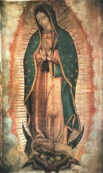 Virgen de Guadalupe Familia screenshot 3