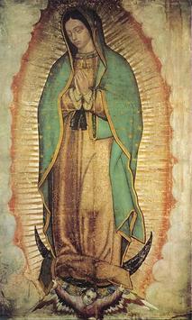 Virgen de Guadalupe Familia screenshot 4
