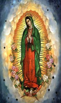Virgen de Guadalupe Imagen screenshot 4