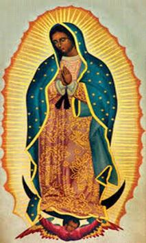 Virgen de Guadalupe los Bendiga apk screenshot