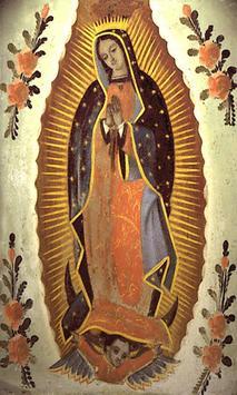 Virgen de Guadalupe Perdon poster