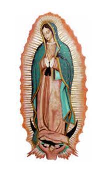 Virgen de Guadalupe que Llora screenshot 2