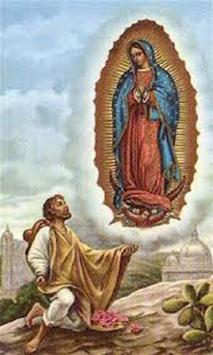 Virgen de Guadalupe Rosa Mistica apk screenshot