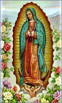 Virgen de Guadalupe Siempre poster