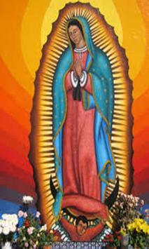 Imagenes Aniversario Virgen de Guadalupe screenshot 1