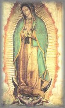 Imagenes Aniversario Virgen de Guadalupe screenshot 2