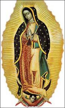 Imagenes Aniversario Virgen de Guadalupe screenshot 4